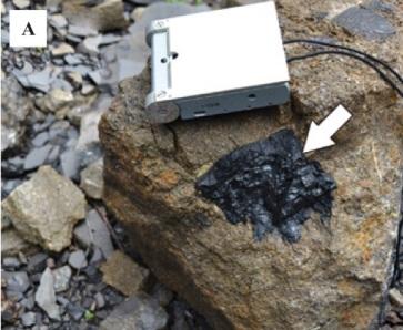 coal fragments